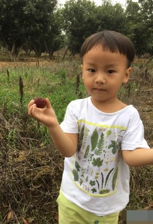三岁男童适合剪什么短发发型 修饰呆萌可爱的小朋友发型打造