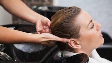 最简单的去头螨方法 主要一啃食油脂和发根为生